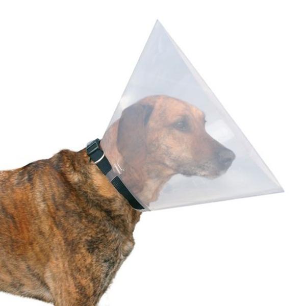 Воротник собаке своими руками
