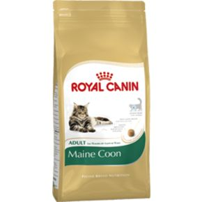 ROYAL CANIN Maine Coon 31 Корм для Мейн кунов